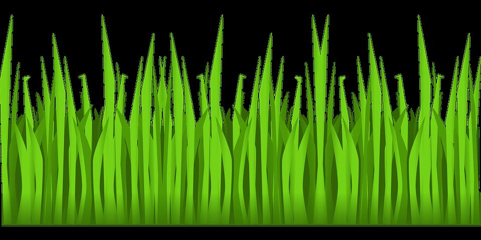 Gambar vektor gratis Hijau Rumput Pertumbuhan Alam