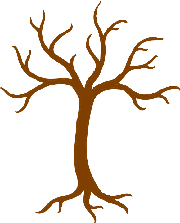 tree branch bare free vector graphic on pixabay