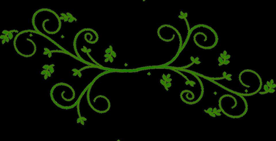 Line Art Flower Design Png : Floral design green leaves · free vector graphic on pixabay