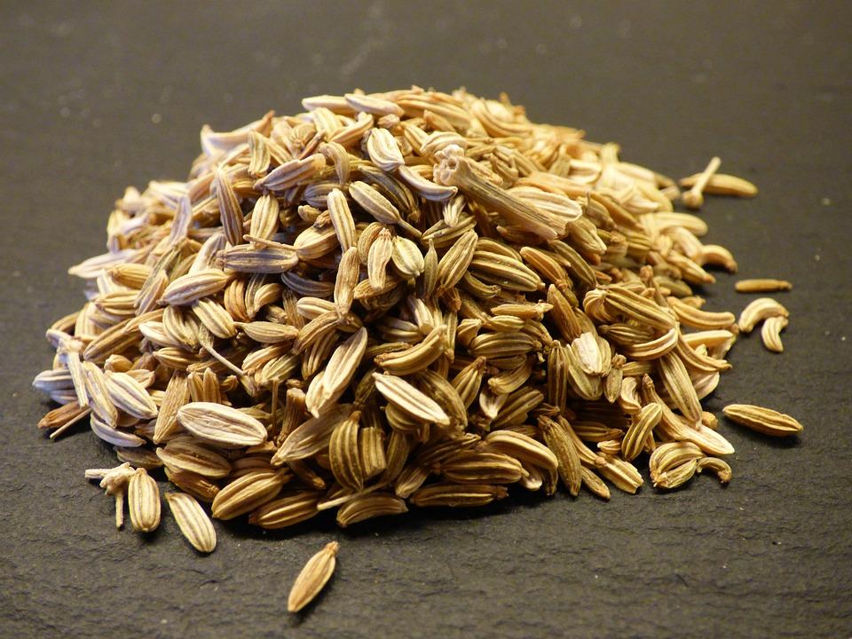Fenouil, Semences, Herbe, Alimentation, Manger