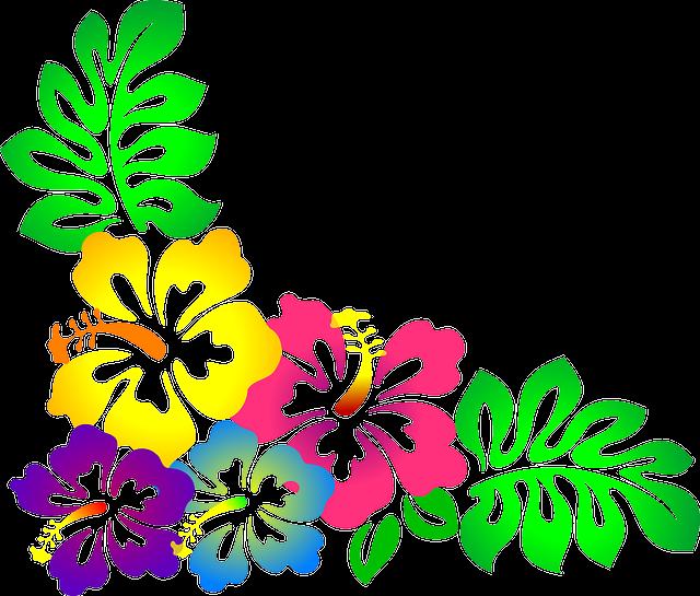 blume hawaii hibiskus kostenlose vektorgrafik auf pixabay. Black Bedroom Furniture Sets. Home Design Ideas