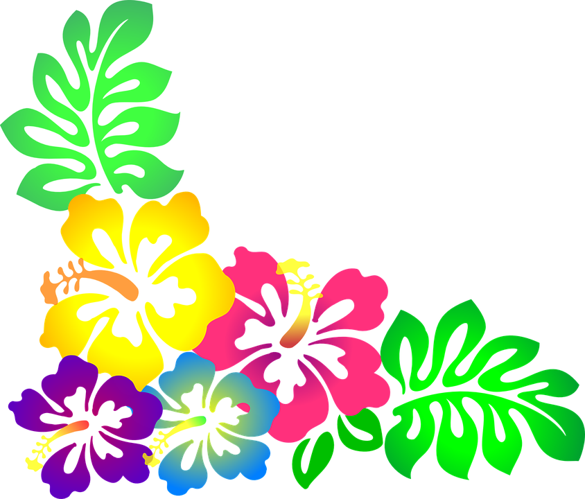flower hawaii hibiscus free vector graphic on pixabay rh pixabay com hawaiian flower print vector hawaiian flower vector free