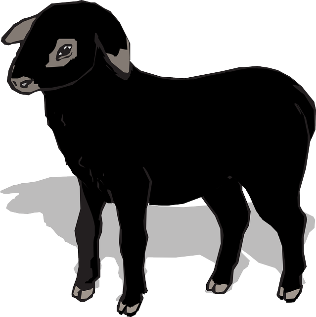 The Black Sheep Online