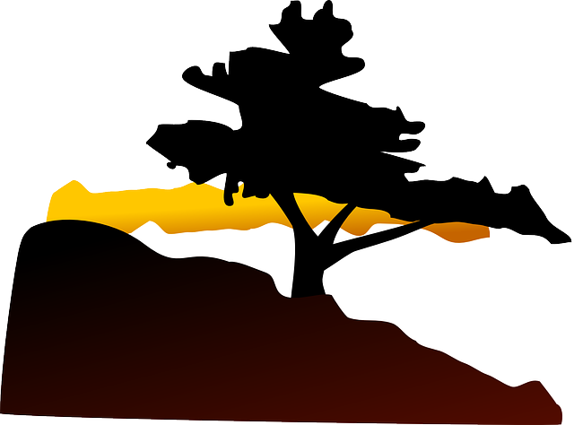 Free vector graphic: Tree, Hill, Sunset, Landscape - Free ...