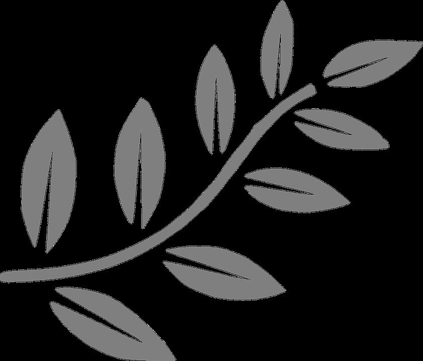 Árbol Rama Hojas · Gráficos vectoriales gratis en Pixabay