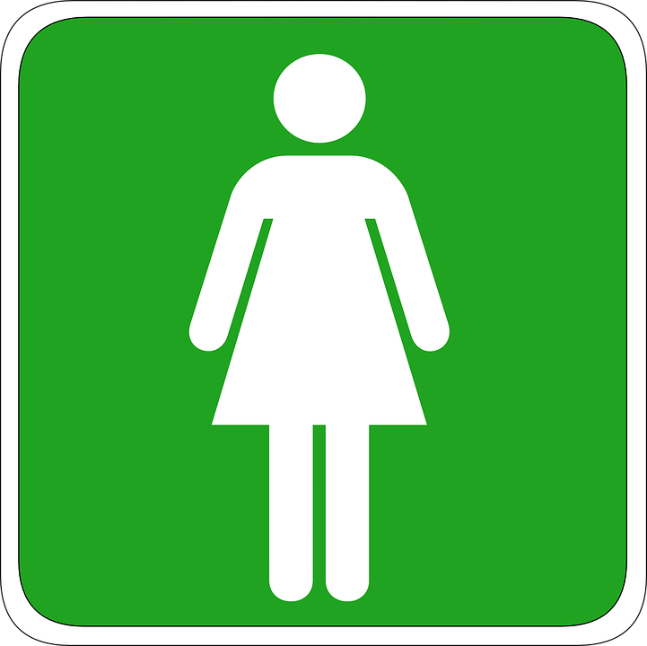 Free vector graphic woman toilet ladys icon free - Modele de toilette wc ...