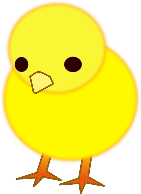 Chick Cute Yellow Free Vector Graphic On Pixabay