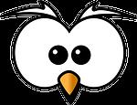 owl, hoot, head