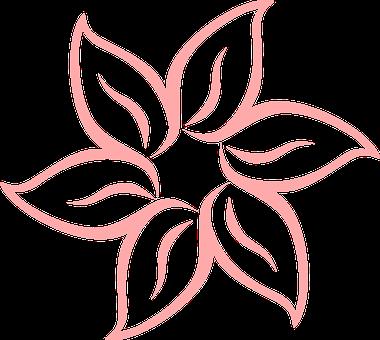 Fleur, Tropicaux, Rose, Nature, Floraux