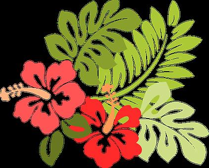Blüten Vektorgrafiken · Pixabay · Kostenlose Bilder Downloads