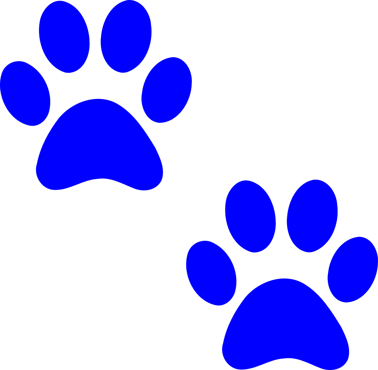 Pictures of puppy paw prints Index m