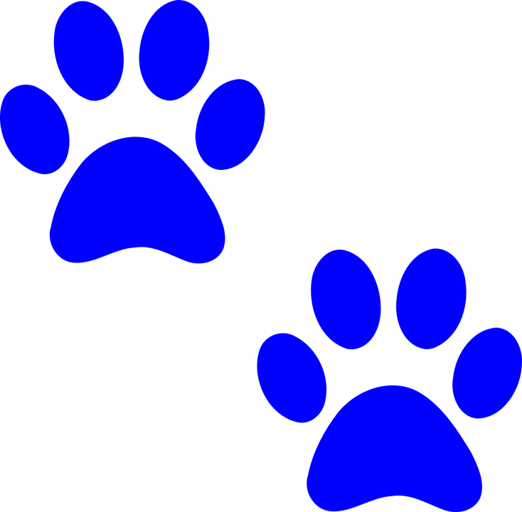 Paw Prints Dog Free Vector Graphic On Pixabay