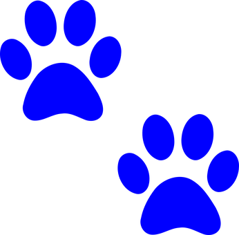 paw print images pixabay download free pictures rh pixabay com clipart dog paw print outline clip art dog paw print free