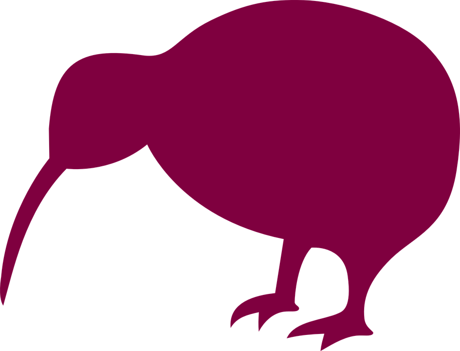 Line Drawing Of New Zealand : Free vector graphic kiwi bird new zealand silhouette