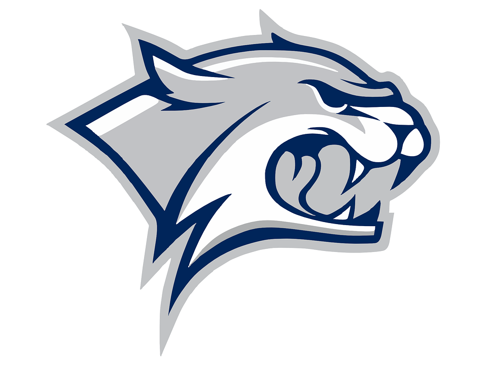Free vector graphic tiger predator cat big cat free image on - Free Vector Graphic Wildcat Head Logo Aggressive