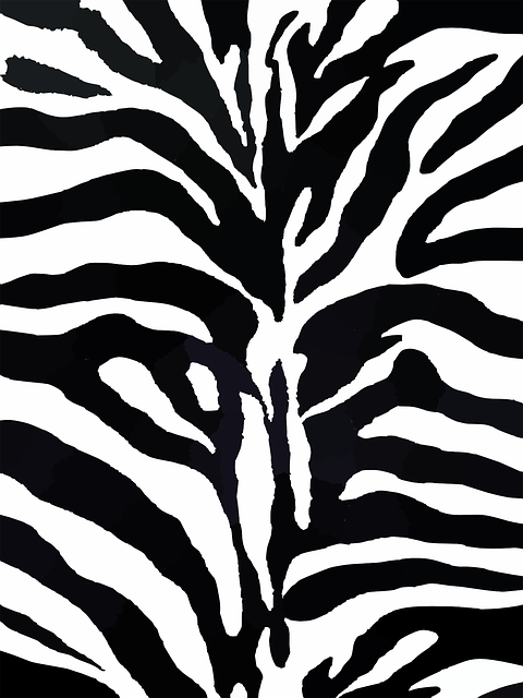 zebra pattern design 183 free vector graphic on pixabay