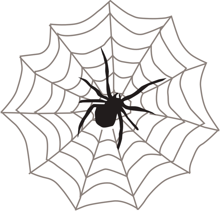 spider web black arachnid free vector graphic on pixabay rh pixabay com
