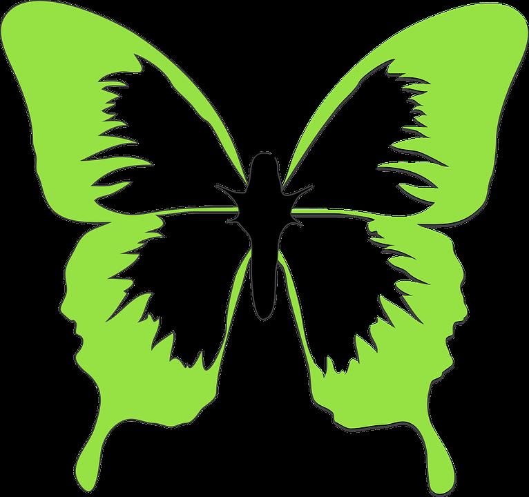 Papillon dessin art images vectorielles gratuites sur - Dessins papillons ...