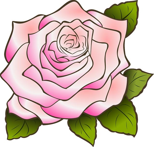 Fleur Rose Dessin Png Idee D Image De Fleur