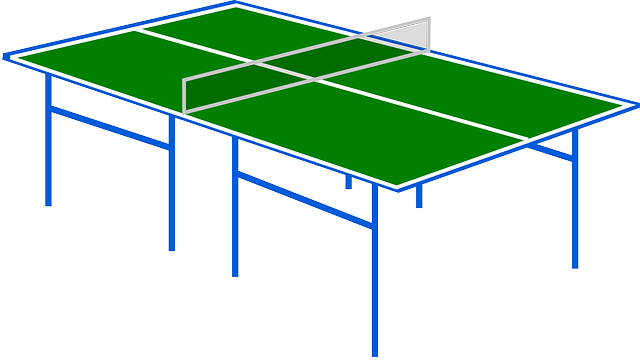 Free vector graphic table tennis ping pong sport net free image on pixabay 309701 Dimensions d une table de ping pong