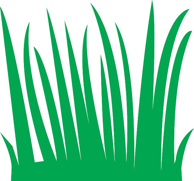 grass green nature free vector graphic on pixabay rh pixabay com free vector grass brush free vector grass background