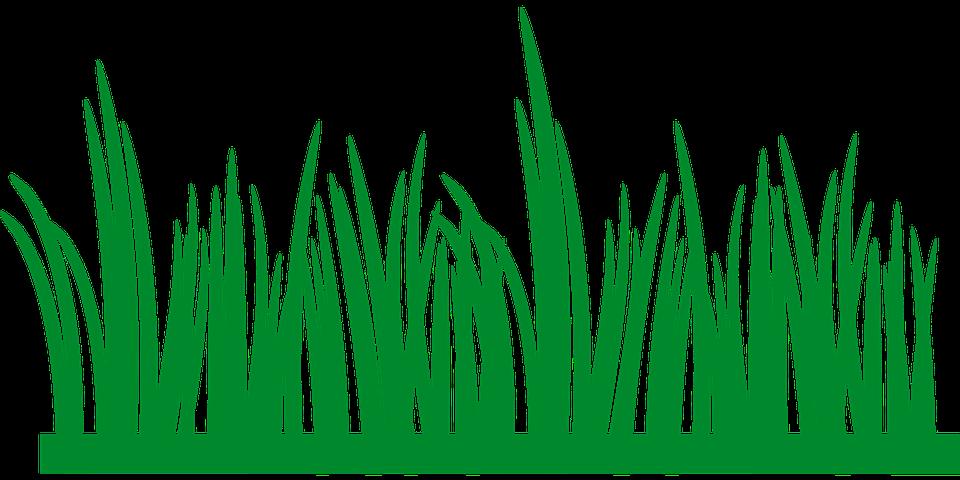 Grass Element Png Clipart Picture: กราฟฟิกเวคเตอร์ฟรี: หญ้า, สนามหญ้า, สีเขียว, ข้อมูล