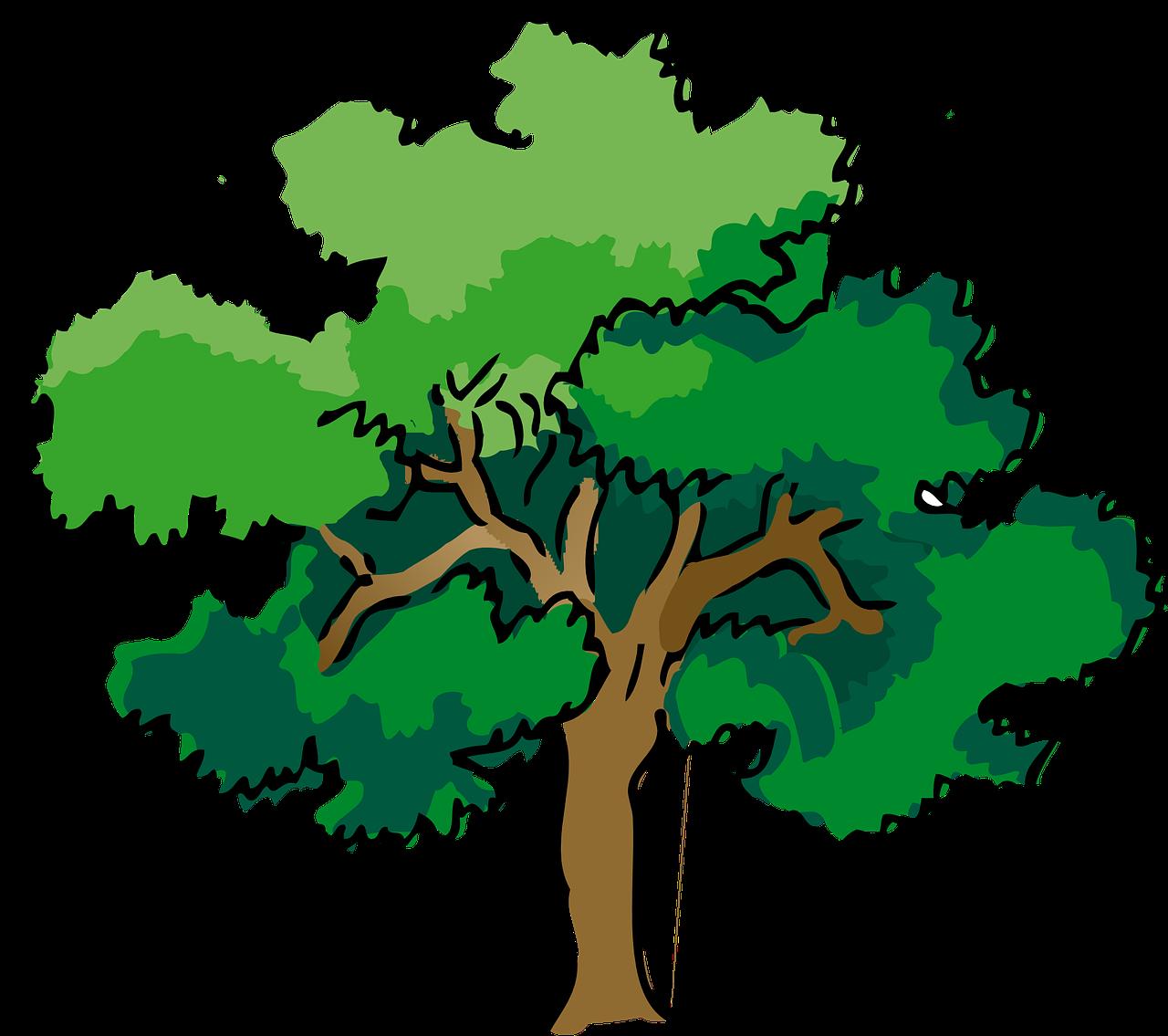 Зонтик, картинки для детей деревья летом
