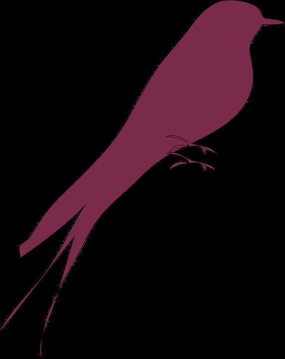 Love Bird Purple - Free vector graphic on Pixabay