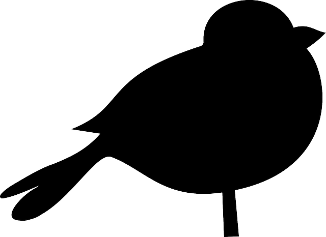 Bird Black Silhouette Fat 183 Free Vector Graphic On Pixabay
