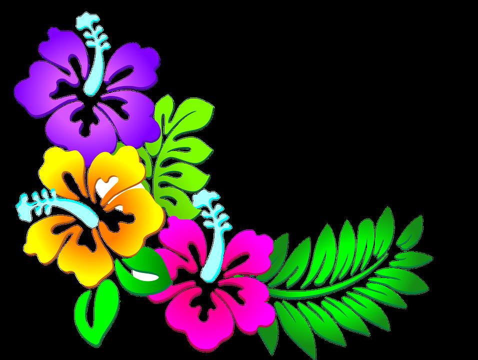 Flores Florales Hojas Graficos Vectoriales Gratis En Pixabay