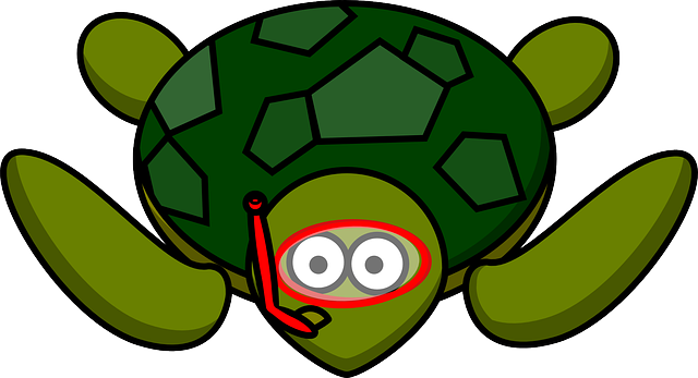 Free vector graphic: Turtle, Animal, Nature, Water - Free ...