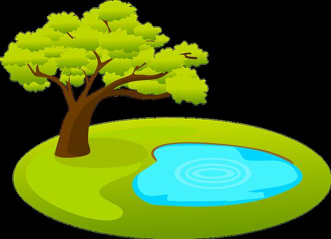 рисунок с деревом и водой первые