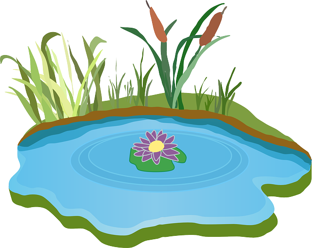 pond water outdoor  u00b7 free vector graphic on pixabay Clip Art Black and White Cattails cattails plant clipart