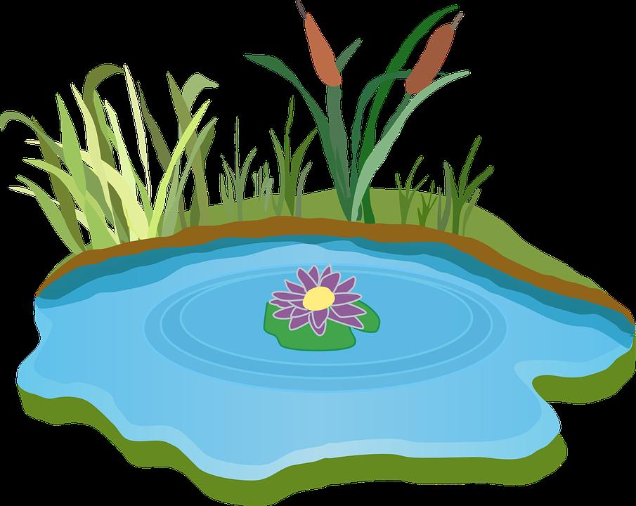Картинки детские пруд