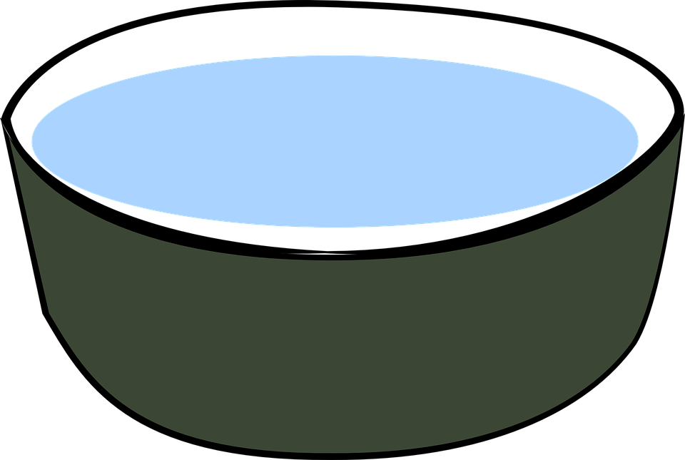 Dog bowl png - photo#13
