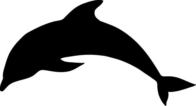 dolphin mammal animal  u00b7 free vector graphic on pixabay Fish Silhouette Clip Art Fish Silhouette Clip Art