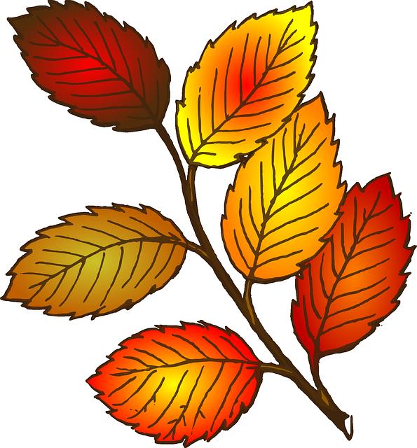 Осенние листочки нарисованные картинки