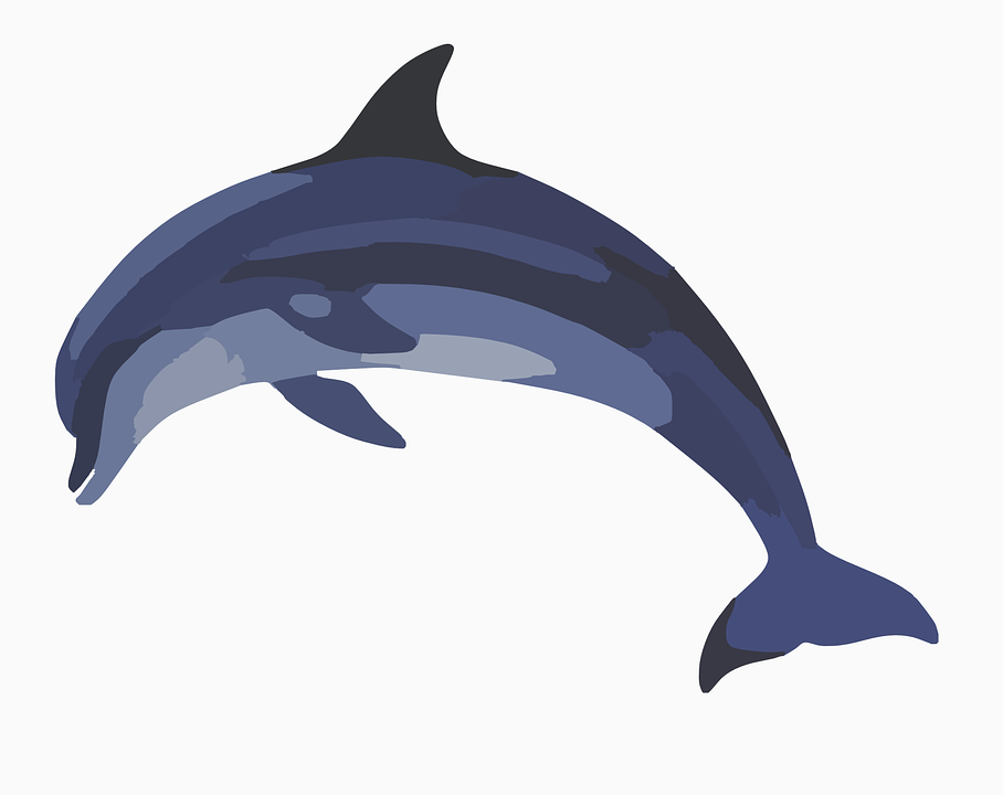 Dolphins Drawings Black And White Free vector graphic: D...
