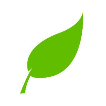 Leaf, Green, Environment, Natural, Plant