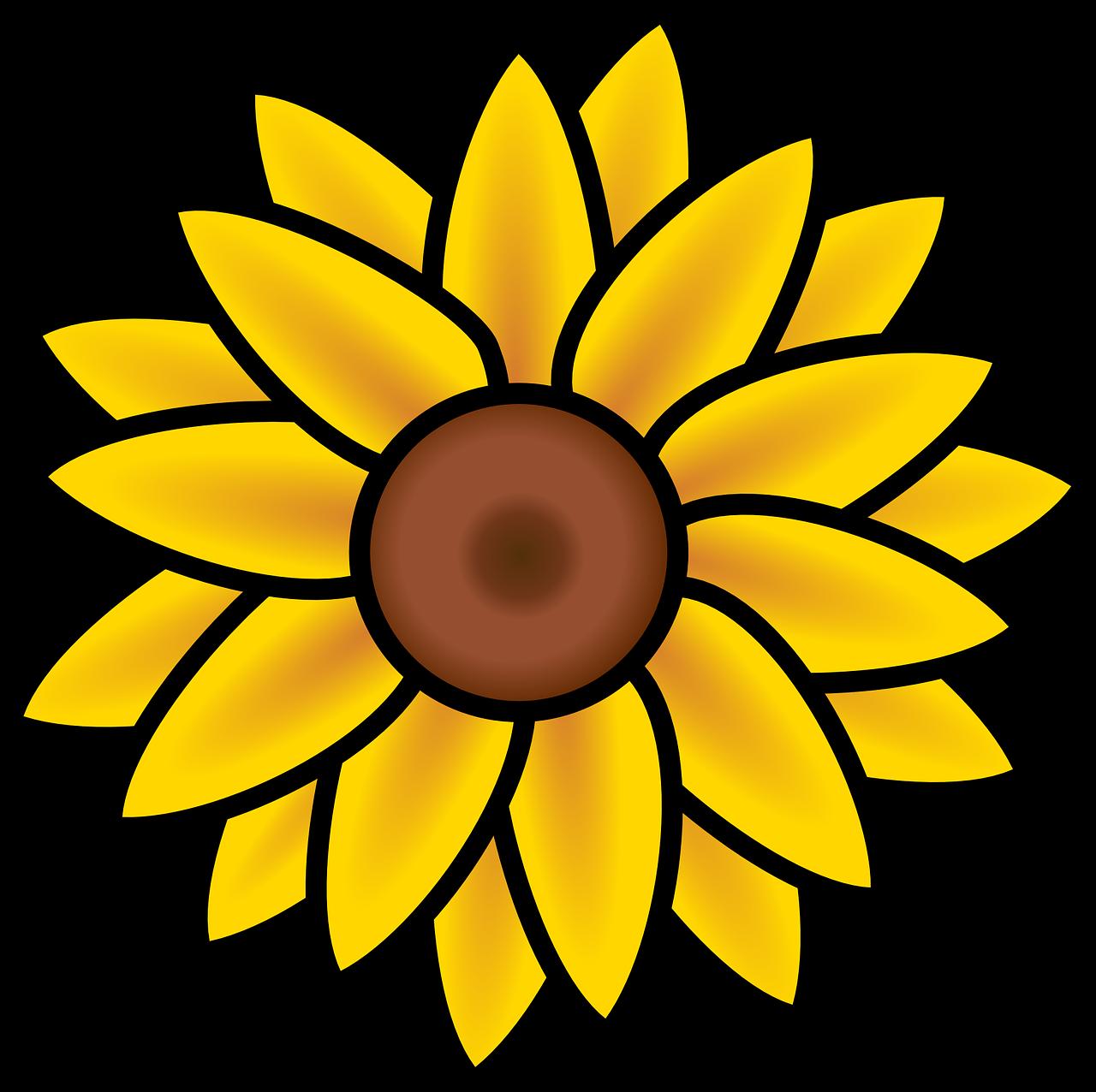 Bunga Matahari Musim Panas Alam Gambar Vektor Gratis Di Pixabay