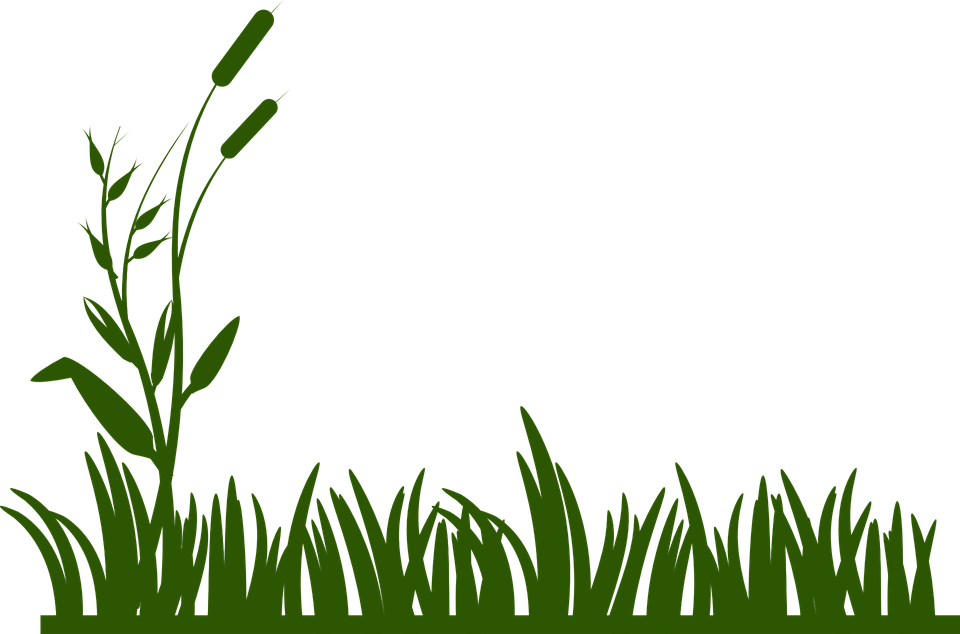 grass background green free vector graphic on pixabay rh pixabay com  grass border clip art free