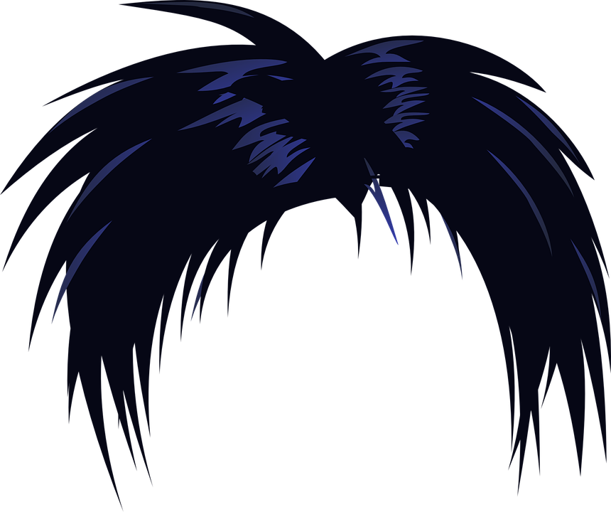 Hair Wig Black Free Vector Graphic On Pixabay
