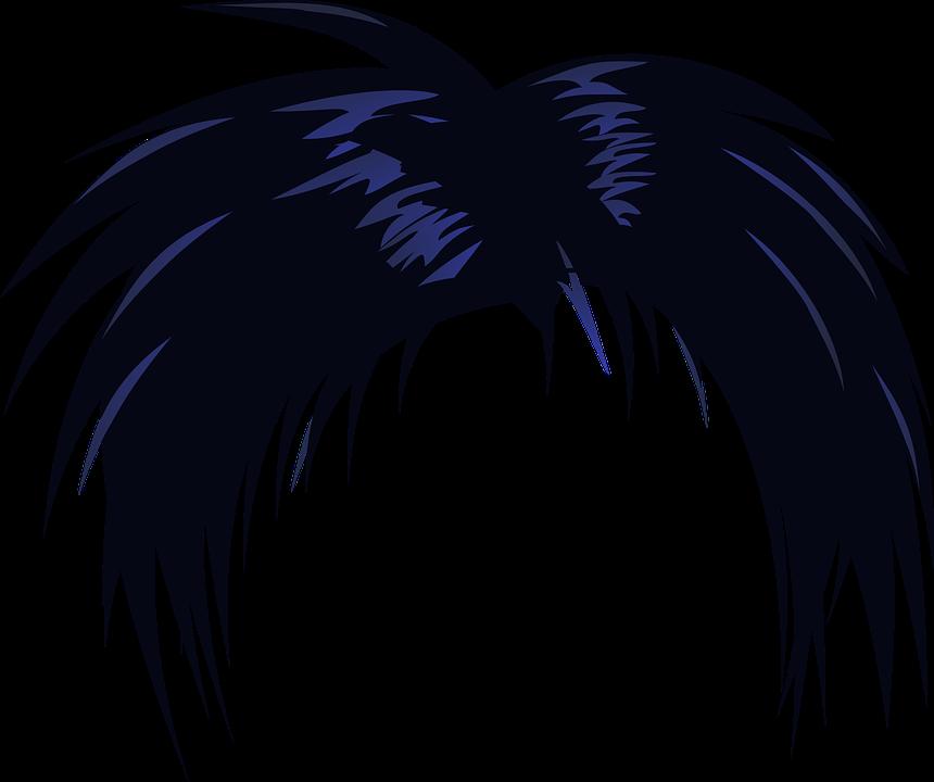 Kostenlose Vektorgrafik: Haar, Perücke, Schwarz, Cosplay