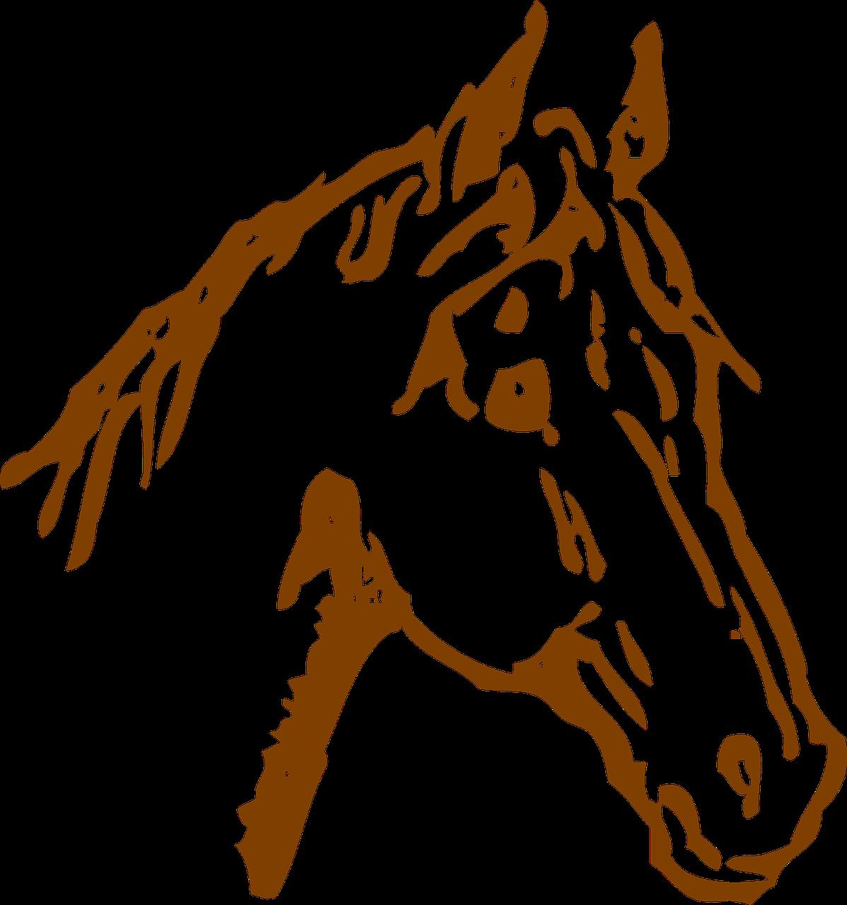 Quarter horse head silhouette