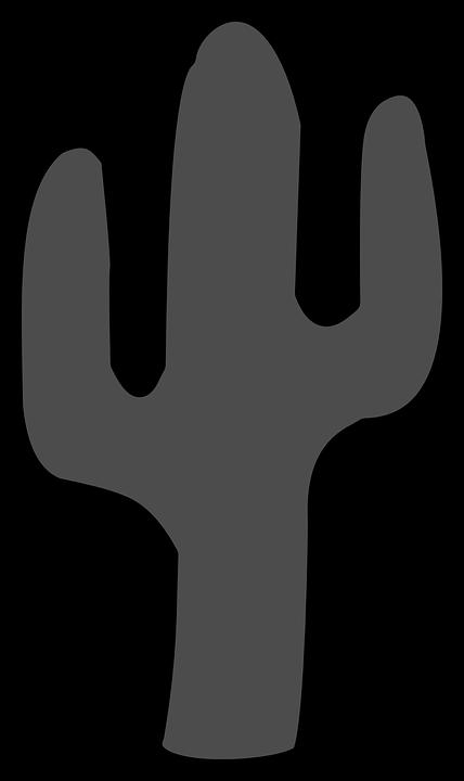 Cactus Plant Desert · Free vector graphic on Pixabay
