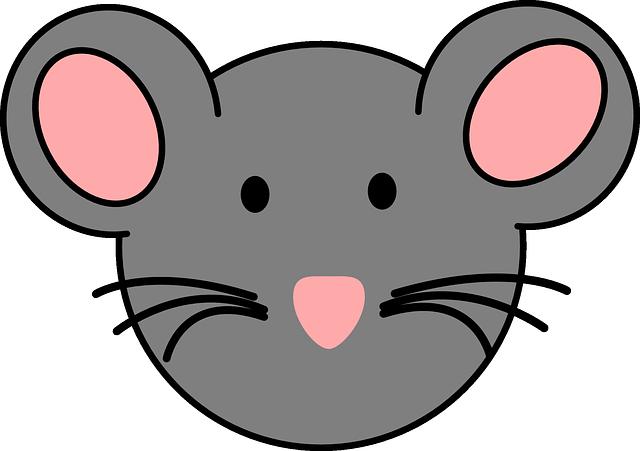 Vector Gratis Del Rat 243 N Cara Animales Imagen Gratis