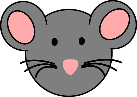 Mouse, Face, Animal, Mammal, Pink, Nose