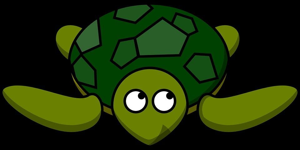 53+ Gambar Hewan Reptil Kartun Gratis