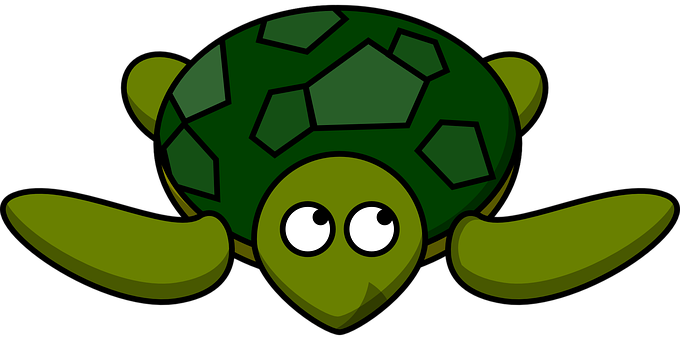 turtle vector graphics pixabay download free images rh pixabay com Sea Turtle Organs Baby Sea Turtles