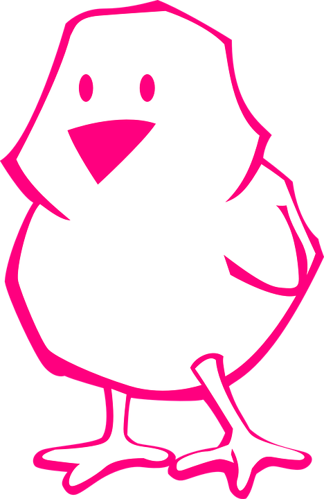 chick pink outline easter bird baby cute cartoon